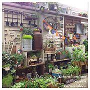 花壇/バルコニー/ベランダガーデン/セダム/多肉/ガーデン雑貨…などのインテリア実例