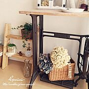 室内グリーン/ラダー/DIY/カゴ/紫陽花ドライ/ミシン脚…などのインテリア実例