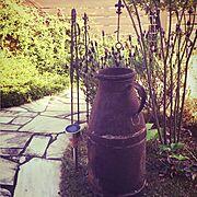 RC福島支部/植物/ミルク缶/Entrance…などのインテリア実例