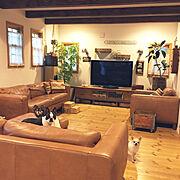 Lounge/ジョイントマット/シンプルライフ/ダイソー/ワイヤーネット/コルクマット…などに関連する他の写真