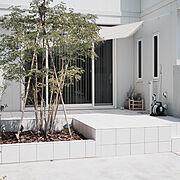 シンプル/子供と暮らす。/庭づくり/シンボルツリー/ほっこりモノトーン/トヨタホーム…などのインテリア実例