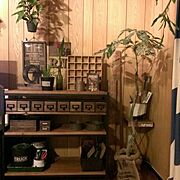 古材/観葉植物/収納/多肉植物/植物/男前…などのインテリア実例