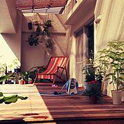 デッキ/観葉植物/outdoor room/Overview…などのインテリア実例