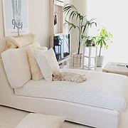 DIY/unicoのテーブル/観葉植物/IKEAのソファー/unico/IKEA…などのインテリア実例