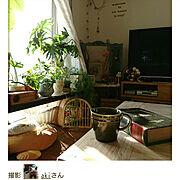 窓枠/犬と暮らす/magに掲載していただきました✨/窓際ディスプレイ/グリーン…などのインテリア実例