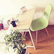観葉植物/北欧/ワンルーム/一人暮らし/ナチュラル/My Desk…などのインテリア実例