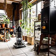 IKEA/ブランケット/NO GREEN NO LIFE/観葉植物/フェニックスロベレニー…などに関連する他の写真