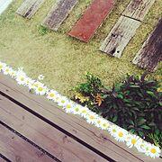 garden/ウッドデッキ/Entrance…などのインテリア実例