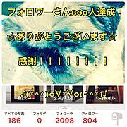 くらしのeショップ/Little Owner/mayukamuサン/フェイクムートン…などに関連する他の写真