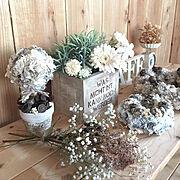 木箱リメイク/空き箱リメイク/多肉植物/簡単DIY/簡単リメイク/観葉植物…などに関連する他の写真