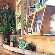 Bedroom/アルファベットオブジェ/DIY棚/セリア♡/cafe風/マグカップ…などに関連する他の写真