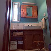 珪藻土壁/RC日本ど真ん中岐阜県支部/いなざうるす屋さん フェイクグリーン/Bathroom…などのインテリア実例