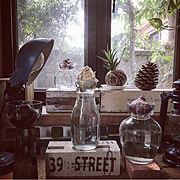ジュウニノマキ/ヒヤシンス水栽培/球根ヒヤシンス/窓辺/WECKの瓶/My Shelf…などのインテリア実例