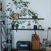 ドウダンツツジ/DIY/見せる収納/グリーンのある暮らし/おうちカフェ/うつわ好き…などのインテリア実例
