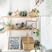 Bedroom/流木/グリーンのある暮らし/ディアウォール棚/昭和な台所/エアプランツ…などのインテリア実例