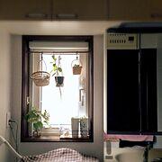 サニタリールーム/プラントハンガー/多肉植物/紫陽花/Bathroom…などのインテリア実例