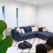 シーグラスバスケット/クッションカバー/IKEA/グリーンのある暮らし/綺麗を保ちたい…などのインテリア実例