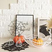 cocowalk/セリア/ナチュラル/植物のある暮らし/エアプランツ/雑貨…などに関連する他の写真