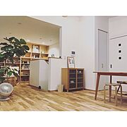 relax form/ソファー/おりあげ天井/テレビボード/フィカスアルテシマ/エバーフレッシュ…などに関連する他の写真