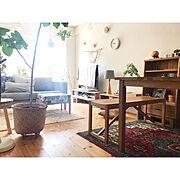 よし天井/グリーンのある暮らし/観葉植物/ワンコと暮らす家/無垢の床/ナチュラルインテリア…などに関連する他の写真