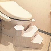 ダンボール/牛乳パック/トイレ/カッティングシート/Bathroom…などのインテリア実例