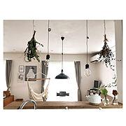 IKEA/植物/モンステラ/king of Green/Loungeに関連する他の写真