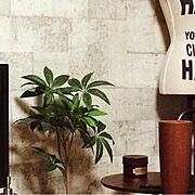 サイドテーブル/フェイクグリーン/トルソー/一人暮らし/コンクリート柄/スチームパンク…などのインテリア実例