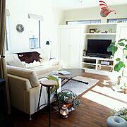 IKEA/ゴムの木/モビール/北欧/ソファ/Lounge…などのインテリア実例