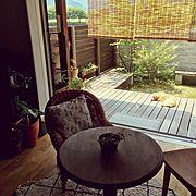 イベ材木塀のインテリア実例写真