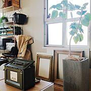 薬莢箱?/植物のある部屋/植物/フレーム窓枠/見せる収納/Lounge…などのインテリア実例