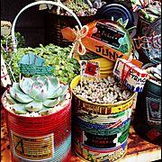 ガーデンピック/マスキングテープ/ダイソー/セリア/リメイク缶/ガーデニング…などのインテリア実例