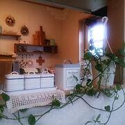 今日は曇り、室内暗め。/ポトス♡/キッチンカウンター/White♡/雑貨大好き♡…などのインテリア実例