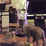 コーヒー/シュライヒ/テーブル/照明/観葉植物/DIY…などのインテリア実例