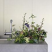 花のある暮らし/グローエ/塩系インテリアの会/おうちカフェ/マンションリノベ/ホワイトインテリア…などのインテリア実例