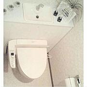 カインズホームの木材/カインズホームのペンキ/Cainz/●主人のDIY●/タンクレス DIY…などのインテリア実例