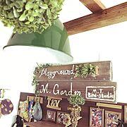 IKEA/観葉植物/西海岸インテリア/カリフォルニアスタイル/初投稿…などに関連する他の写真