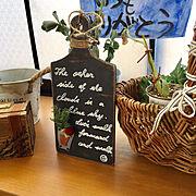 ドライフラワー/ガラス瓶/りんご箱/ルビーネックレス/ハオルチア/水耕栽培…などに関連する他の写真