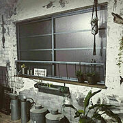 木工/グリーンのある暮らし/漆喰壁/北欧xDIY/いいね&フォローありがとうございます☆/青リンゴ…などに関連する他の写真