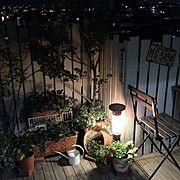 雑貨/ドライフラワー/asasaちゃん♡/DIY/カゴ/ミラー…などに関連する他の写真