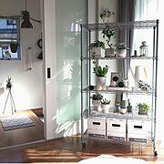 ルミナスラック/セリア/グリーンスペース/グレーインテリア/フライングタイガー/IKEA…などのインテリア実例