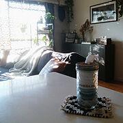 ガラス瓶のインテリア実例写真