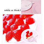 シンプルライフ/ホワイトインテリア/ママ友会♡♡♡/いちごのレアチーズケーキ/ニトリのお皿…などのインテリア実例