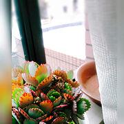 instagram→keme room/いつもいいねやコメント感謝です♩/いいね、フォロー本当に感謝です♡…などに関連する他の写真