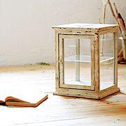 流木/手作り/漆喰塗り壁/古材/足場板/YUT@CAFE…などのインテリア実例