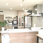 ungrid/Todayful/IKEA/RonHarman/キッチン…などに関連する他の写真