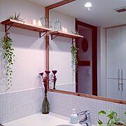 グリーンのある暮らし/洗面所/漆喰壁DIY/棚 DIY/タイルDIY/ドライフラワー…などのインテリア実例