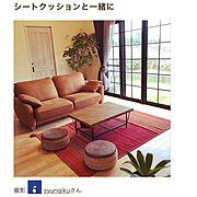 Lounge/スペイン漆喰/関家具ソファー/樺桜のフローリング/漆喰壁/小さなお家…などのインテリア実例