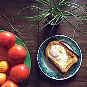 トーストのインテリア実例写真