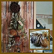セリア/こどもと暮らす。/団地/子供目線インテリア/My Shelfに関連する他の写真