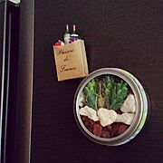 テラリウム風/フェイクグリーン/Handmade♡/Can ★Do/セリア♡…などのインテリア実例
